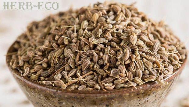 Анисовое семя и вкусные рецепты Семена растения имеют свежий легкий аромат, их часто используют с целью ароматерапии. Также их добавляют в чай и лекарственные средства для ароматизации.  Применяют семена аниса при лечении бронхитов, воспалений легких, бронхиальной астмы и трахеитов. В гинекологии их используют для стимуляции родовой деятельности.