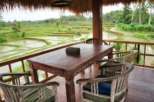 Lunch with #ricefield view
