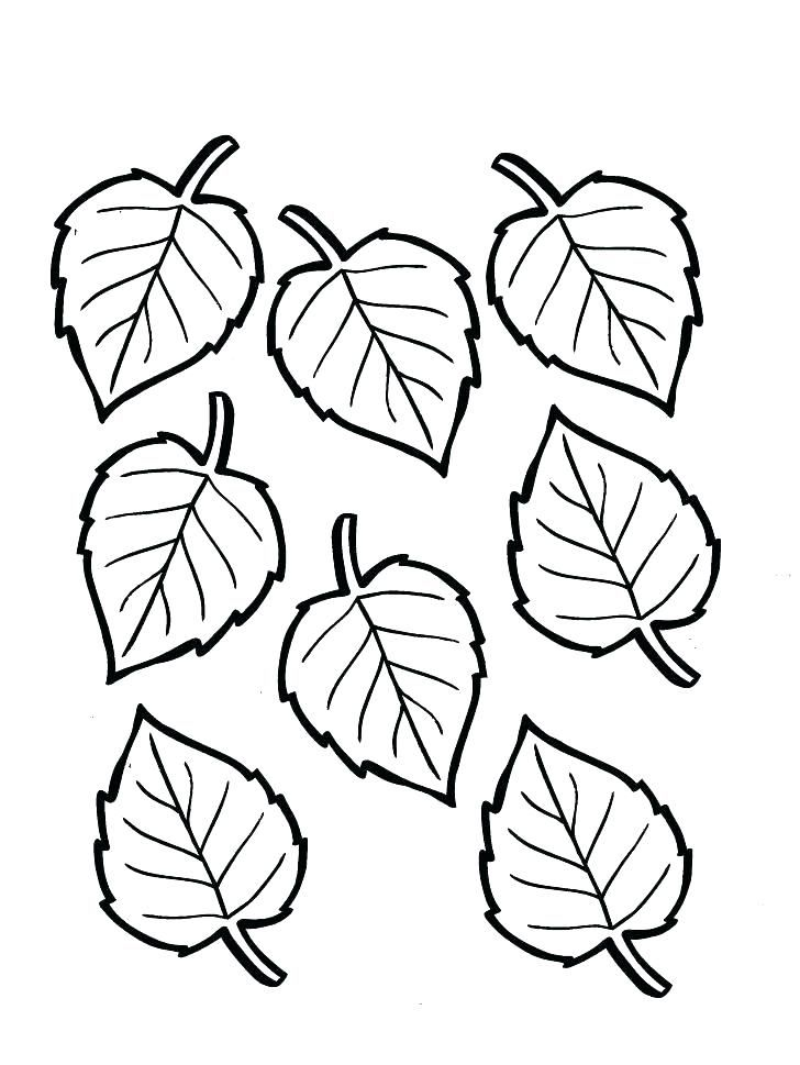 coloring pages fall leaves coloring pages fall thanksgiving leaf ...