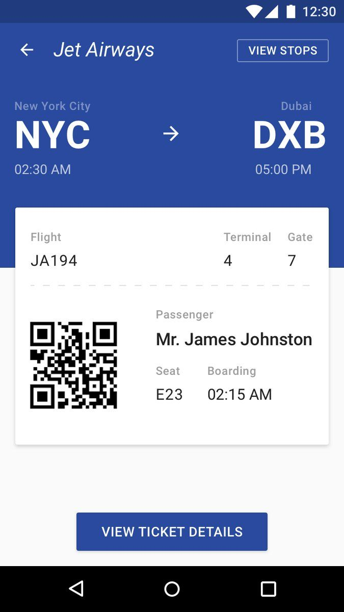 Boarding Pass Flight App Concept