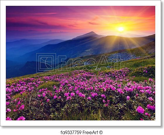 Free Art Print Of Mountain Landscape Mountain Landscape Valley Of Flowers Beautiful Landscapes