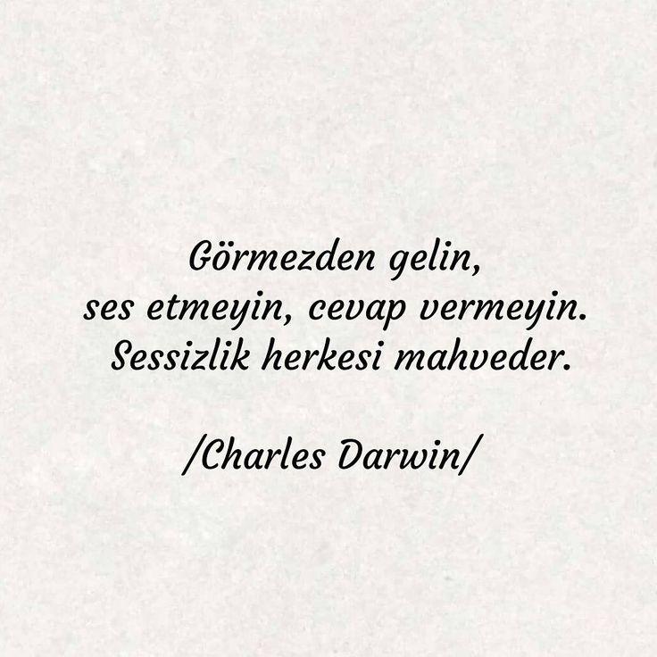 Görmezden gelin, ses etmeyin, cevap vermeyin. Sessizlik herkesi mahveder. - Charles Darwin #sözler #anlamlısözler #güzelsözler #manalısözler #özlüsözler #alıntı #alıntılar #alıntıdır #alıntısözler