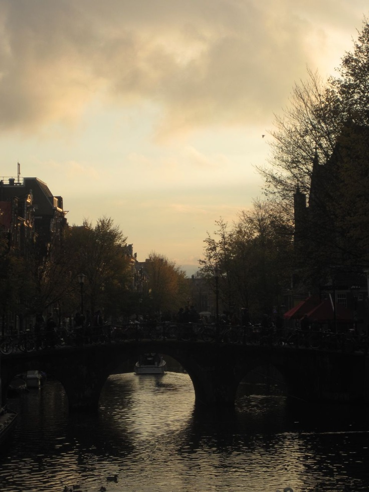 Above the canals, Amsterdam