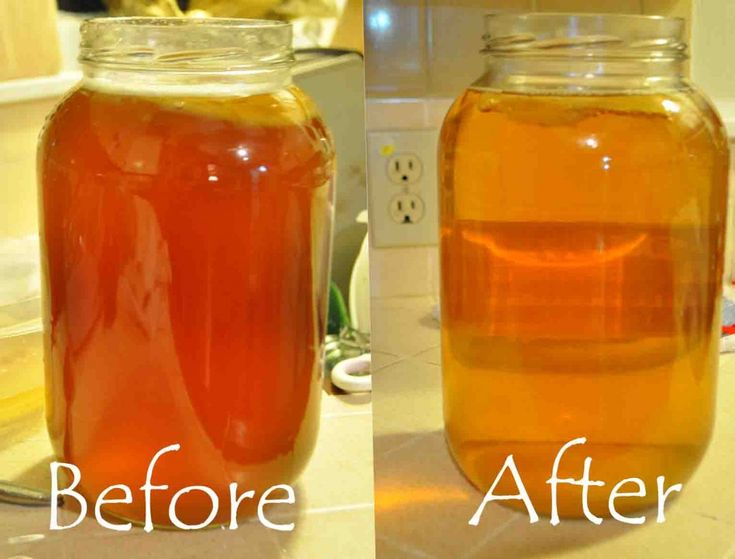 Clear and interesting instructions for making kombucha
