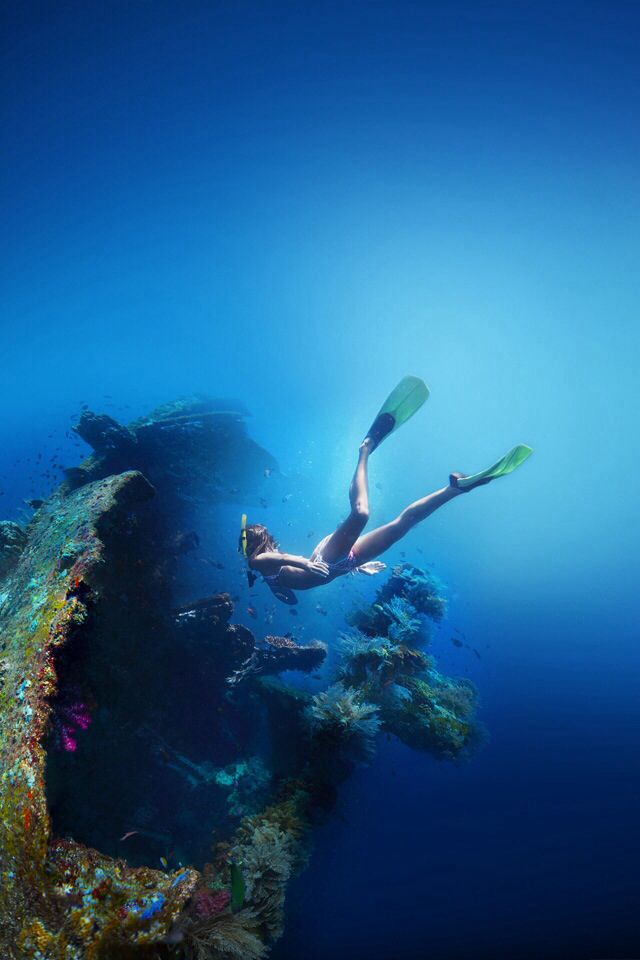 lifeunderthewaves:  Freediving Wreck. Photographer unknow. Source: Pinterest.