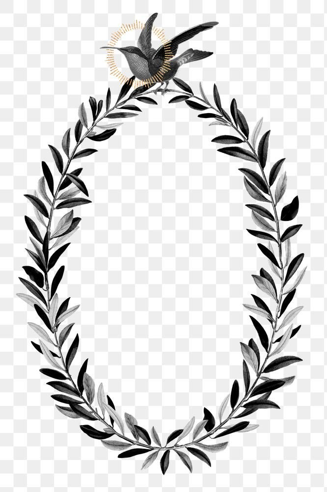 Olive Branches Wreath Png Black Botanical Premium Image By Rawpixel Com Noon Olive Branch Wreath Olive Branch Christmas Border