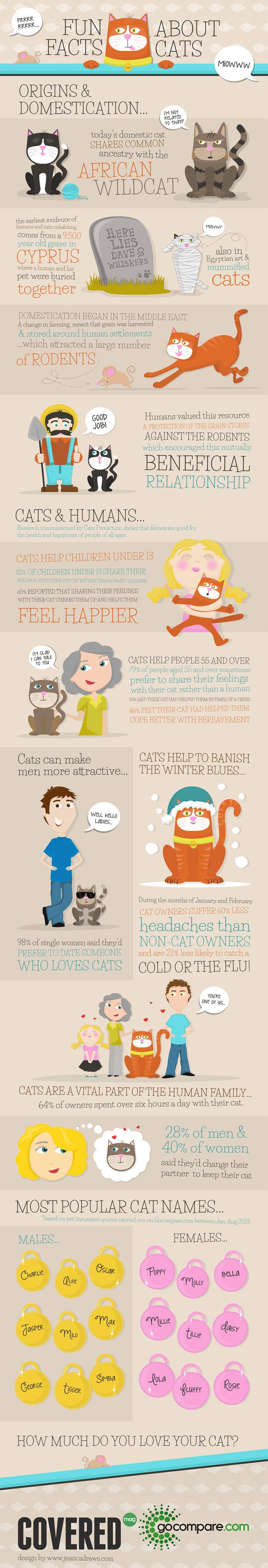 This infographic contains many fun facts about cats, including favorite names (some were a surprise), and benefits cats provide to people of all ages (we already knew how great felines are for us, no surprise there!). Check it out below: