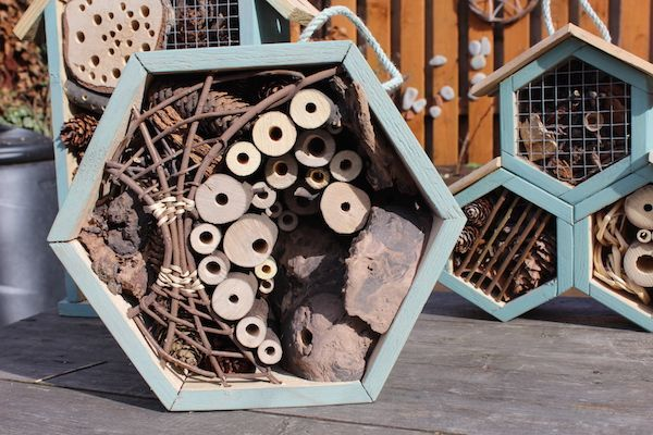 Bee and insect hotel made by Marta Zientek and Wojciech.