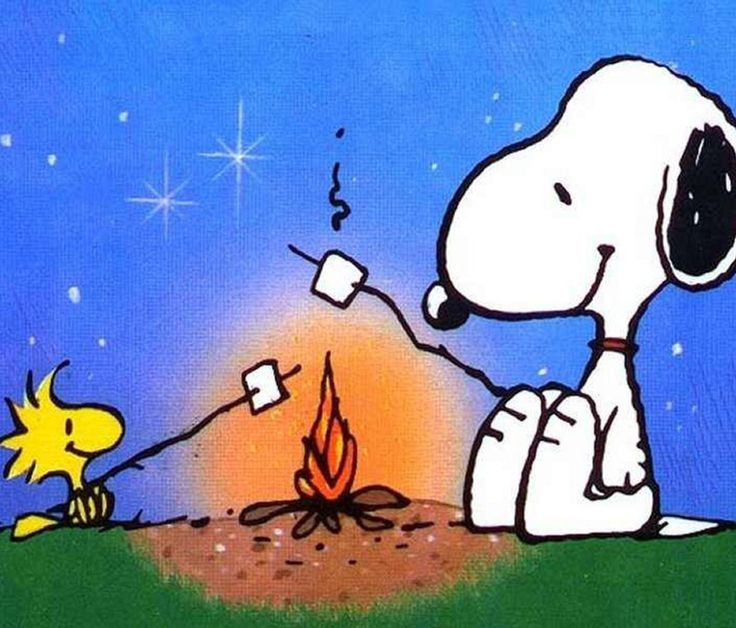 Snoopy and Woody likes toasted marshmellows but I love love love them. O geeze I can smell them- now I crave crave crave a few :)