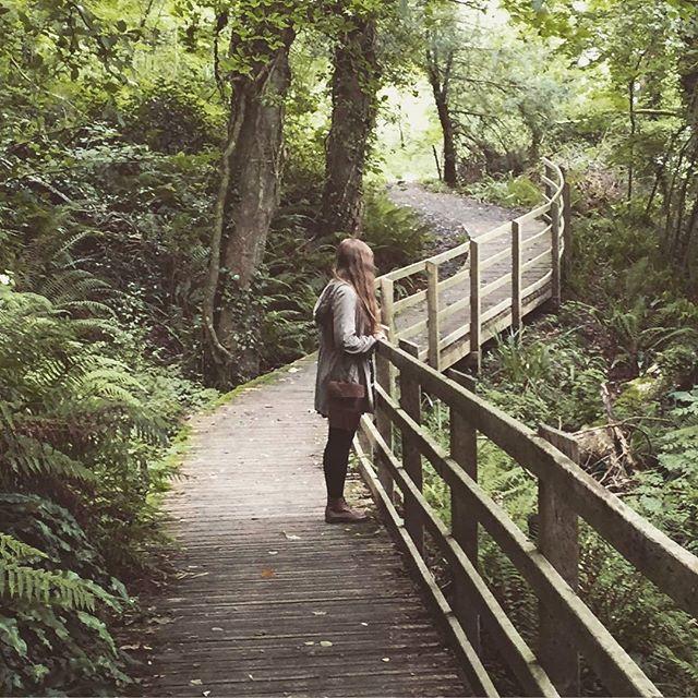 Dietro a #IlCottagechevorrei c'è un piccolo bosco dove poter passeggiare immersi…