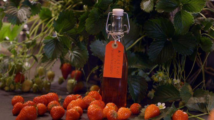 De drank aardbeien-tijm likeur komt uit het programma Koken met van Boven. Lees hier het hele recept en maak zelf heerlijke aardbeien-tijm likeur.