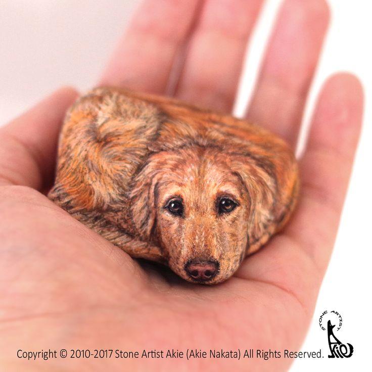 Hello, I'm back☺️ When I find some stone, also they find me. and I want to paint their beautiful eyes that I felt in the stone. Anyway, wish you many Happy New Year!! ただいまです✨ 石を見つける時は石に見つかる時。感じたその眼差しを、石と会話するように大事に描いています。今年もどうぞよろしくお願いします☺️ #art #akie #stoneart #stonepainting #rockart #rockpainting #painting #drawing #animal #dog #retriever #goldenretriever #wishyouhappynewyear