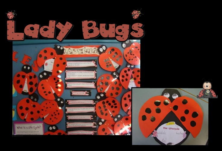 I finally did the ladybugs that I saw on Pinterest a while ago. I thought they came out pretty good.