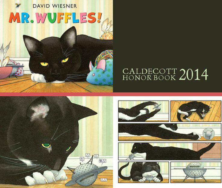 MR. WUFFLES by David Wiesner CALDECOTT HONOR BOOK 2014
