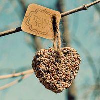 Birdseed Hearts: Eco, Easy and Inexpensive DIY