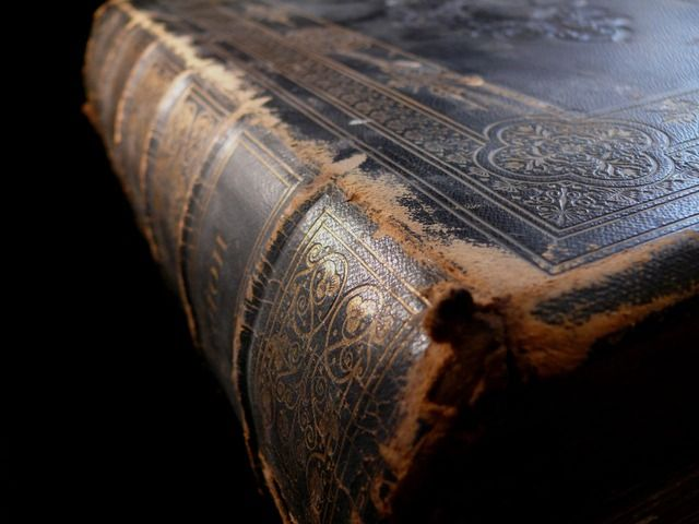 """""""No book in the world deserves to be so unceasingly studied, and so profoundly meditated upon as the Bible."""" – John Quincy Adams *Picture source"""