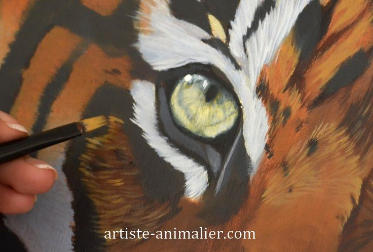 "[Peinture à l'huile] Tigre ""Speed painting"" - YouTube"