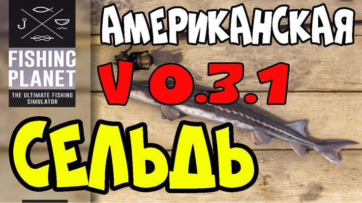 Fishing Planet Версия 0.3.1 | Американская Сельдь | Мичиган, озеро Сент-...