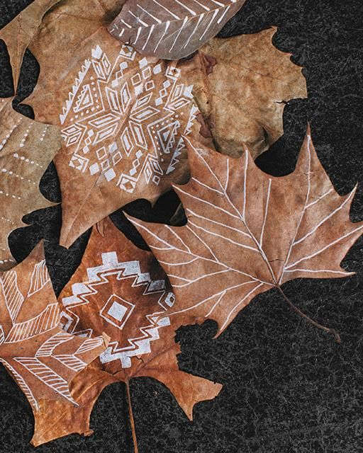 Hand-Drawn Autumn Leaves
