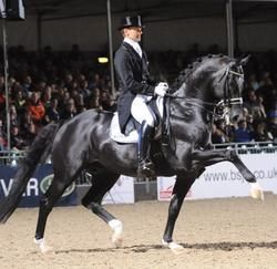 Moorlands Totilas...a Dutch Warmblood..Such a handsome horse. Beautiful in action.