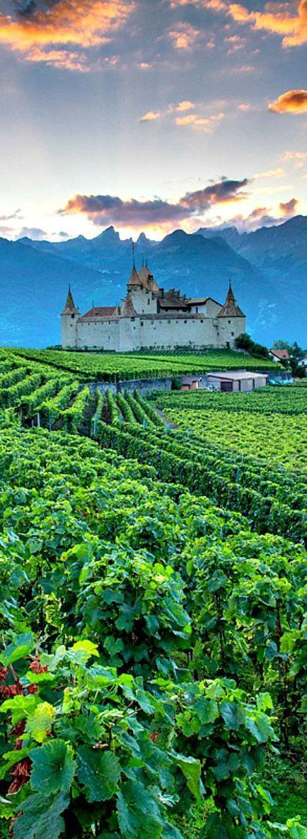 Chateau D'Aigle, Switzerland - with its vine & wine museum beautifully located surrounded by vineyards in the Rhone Valley just minutes away from Lake Geneva  #destinations...x