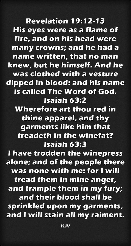 Revelation 19:12-13 Isaiah 63:2-3 King James KJV