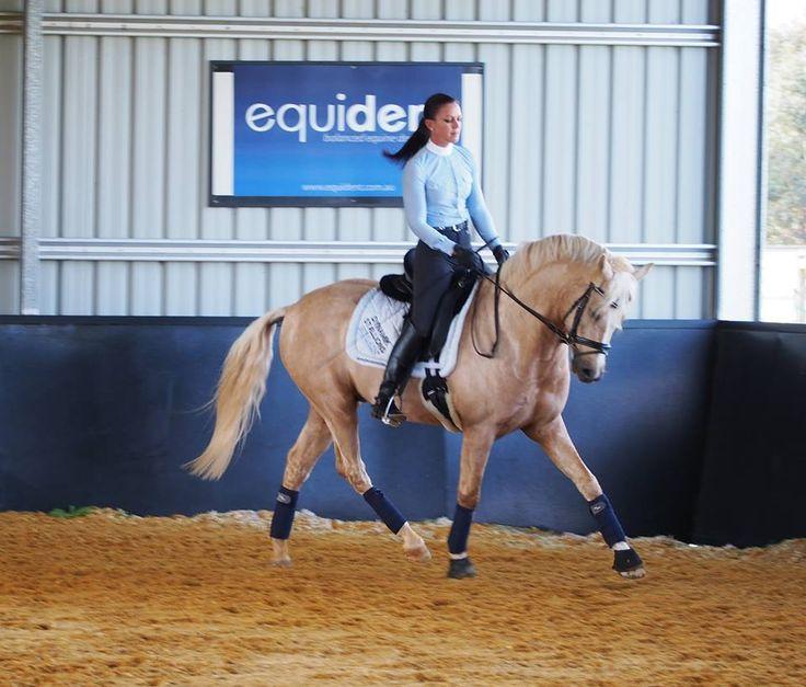 Dressage Pony Golden Rock and Kristy Renae Jarvis