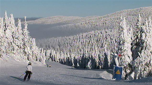 La station de ski Owl's Head triche sur le dénivelé réel de ses pentes