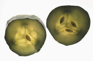 Cómo preparar pepinillos encurtidos: una receta fácil para su conservación