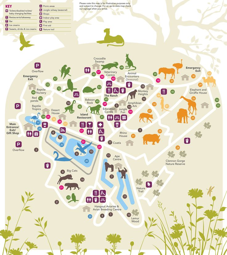 Paignton Zoo interactive map
