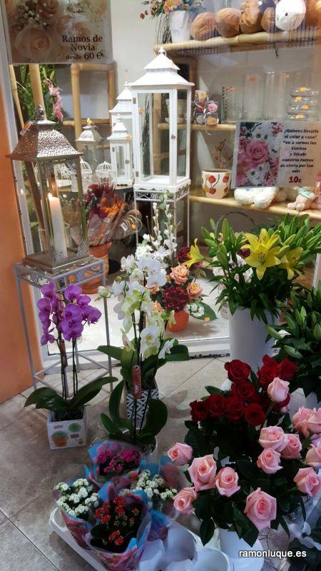 La #floristería de #RamónLuque en #CórdobaEsp | ramonluque.es