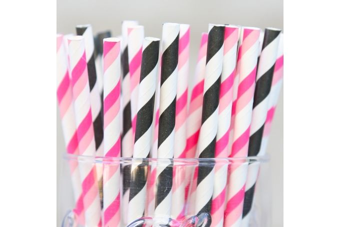 Straws - 50 Pack- Pink & Black Stripes by Besotted