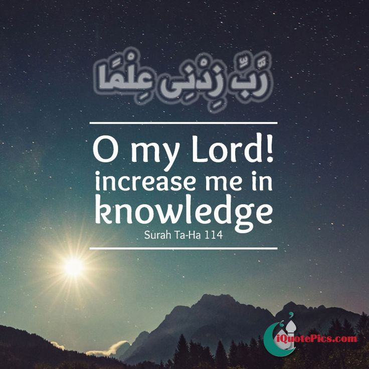 Downloading Arabic Quotes: 28 Best Images About Verses From The Quran On Pinterest