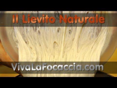 Ricetta per Fare il Lievito Naturale, Li.Co.Li o Pasta Madre in Casa - YouTube