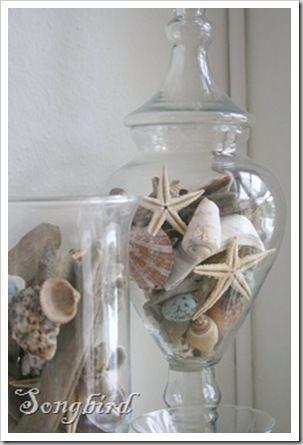 Large seashells & starfish for beach apothecary jars.
