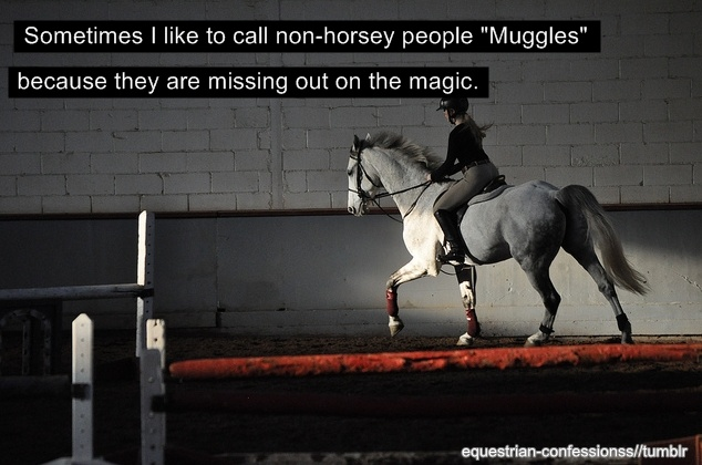love thisNon Hors People, Horseshor People, Equine, True Magic, Call Non Horses, Hors Life, Harry Potter, Equestrian, Hors Supplies