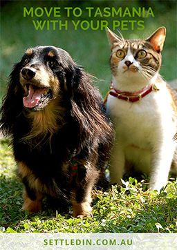Move Your Pets to Tasmania - FREE ebook
