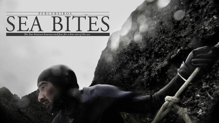 Sea Bites (english subtitles) on Vimeo