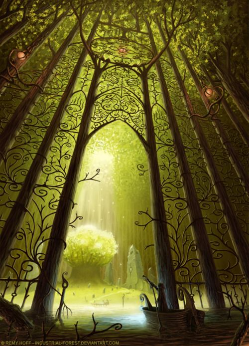 """""""cathedral of trees"""" -- ouatiw  Remy Hoff"""