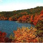 三河湖。豊田市羽布町鬼ノ平 http://www.karen-shimoyama.jp/sightseeing.html