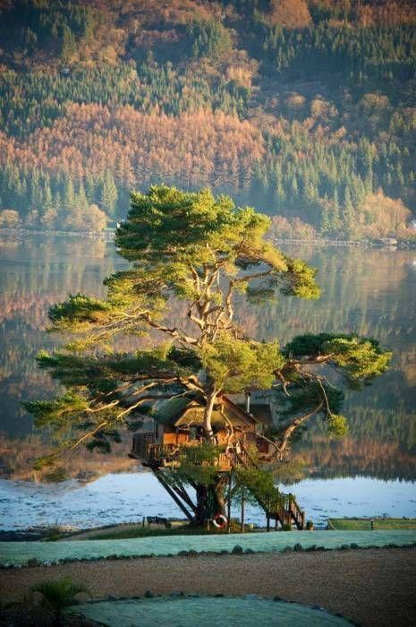 "bluepueblo: "" Tree House Lodge, Loch Goil, Scotland photo via treehouseview """