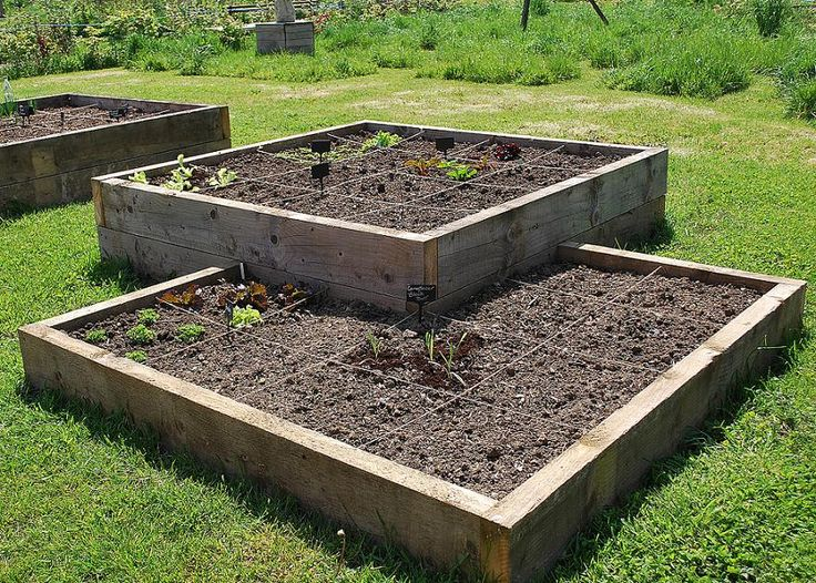 I am not big on symmetry... I love weird angles or rounded planting beds but I actually like this square on square look... There is hope for me yet! - JAX