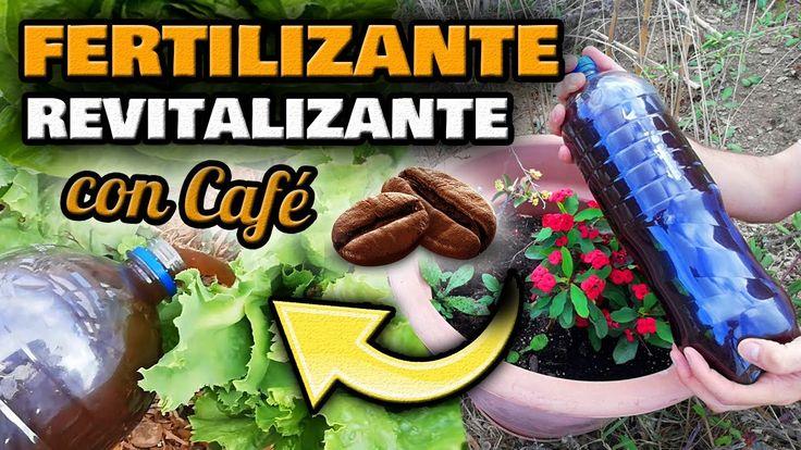 Youtube, Gardens, Low Light Plants, Garden Accessories, Greenhouse Gardening, Vegetable Garden, Youtubers, Youtube Movies