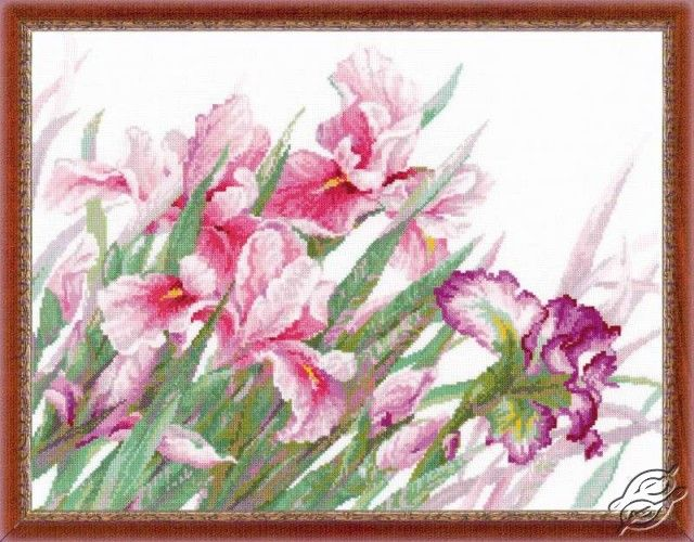 Flowers In Pink - Cross Stitch Kits by RIOLIS - 100/024