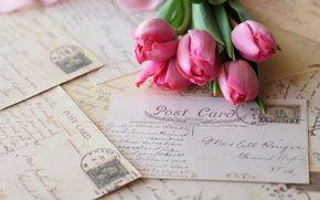 Обои цветы, бренд, винтаж, открытки, розовые, буквы, тюльпаны