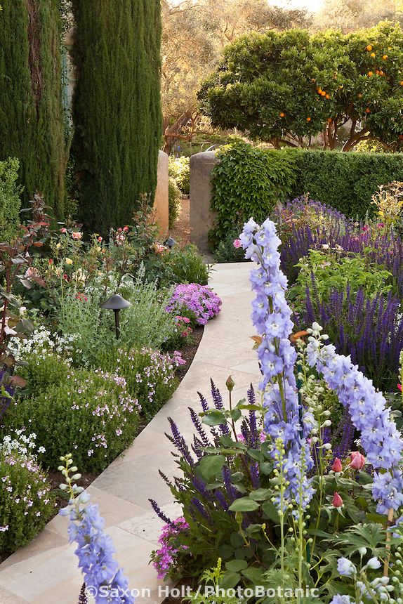 Stone Pathway Through Perennial Border In California Napa Valley Garden.