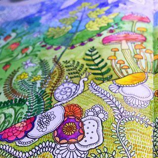 Artadultcoloring Coloring Coloringbook Colorpencils Derwent Carandache JoannabasfordthaiTheTimeGarden Akvarel