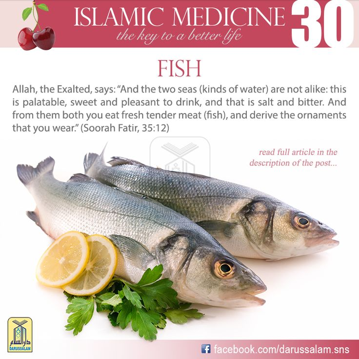 Fish is regarded as one of the foods which form the main diet for millions of people, such as the Japanese, the people of Indonesia and the Eskimos (Inuit), as it provides them with an excellent source of protein that is superior to meat. Fish protein has a high nutritional value, is easily digested and does not leave anything after it is absorbed except a little waste. #DarussalamPublishers #IslamicMedicine #IslamicEBooks #AmazonKindle #KindleStore #BarnesAndNoble