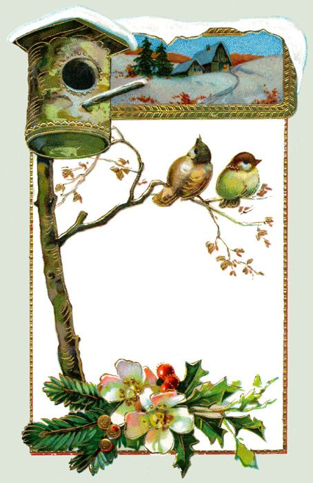 Christmas Birds :: Image 7: