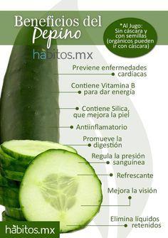 propiedades del pepino - Buscar con Google  #Nutrición y #Salud YG > nutricionysaludyg.com